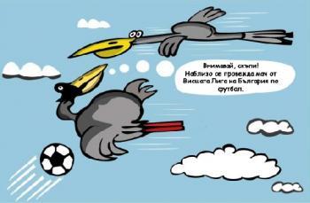 Внимание! БГ футбол