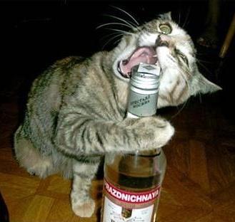 К'во ме гледате, помогнете ми да отворя водката