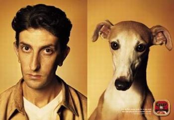 Вярно ли е, че кучетата приличат на стопаните си?