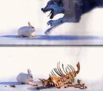 Смъртоносния заек!