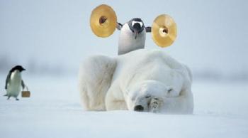 Смелият Пингвин