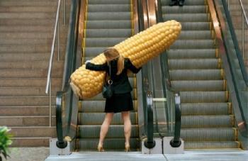 американска царевица