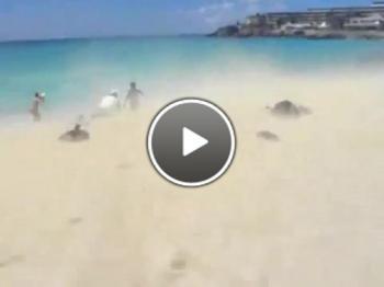 Самолет издухва туристи на плажа